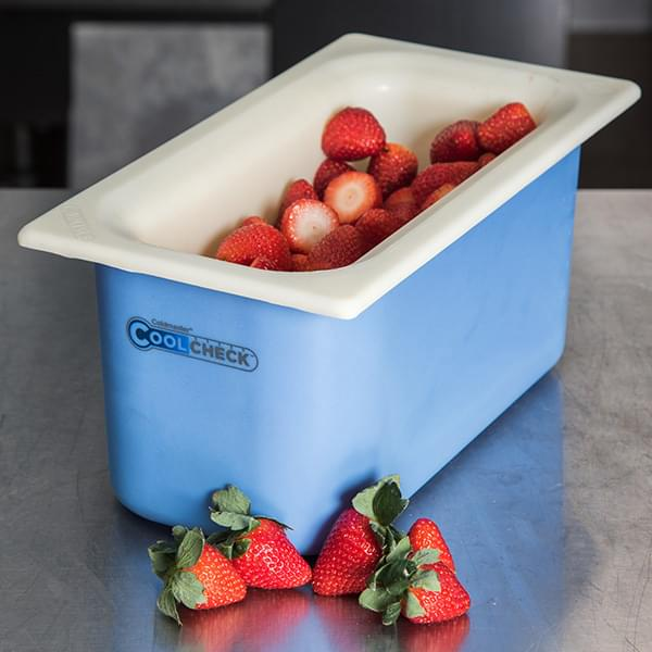 The Carlisle FoodService Products 4 Qt. Coldmaster® CoolCheck Food Pan